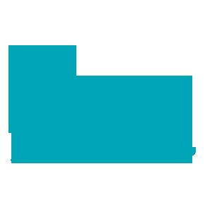 Symbol Alpin Ski